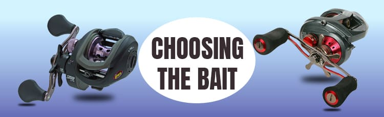 Choosing-The-Bait