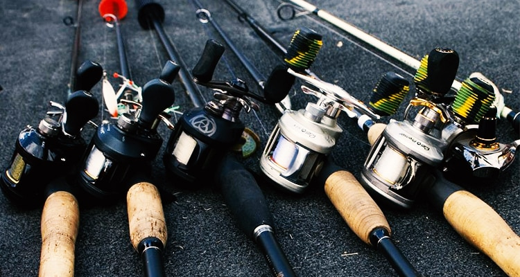 How to Maintain Baitcasting Reels?