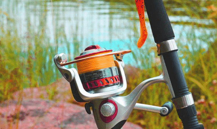 How to Clean Fishing Reels? A Definitive Guide