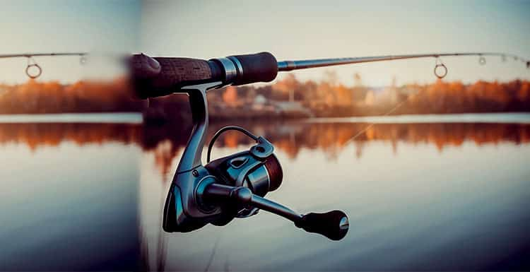 How To Choose A Best Ultralight Spinning Reel?