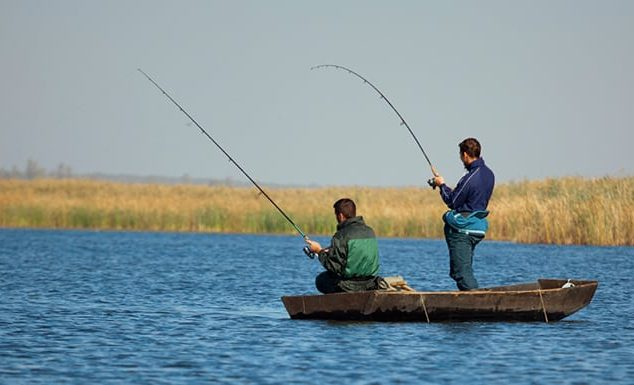 Types of Freshwater Fishing for Beginners & Professionals
