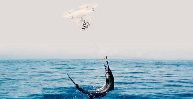 Everything You Need to Know About Drone Fishing