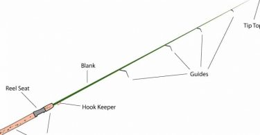 Different Parts of a Fishing Rod – Explained by Experienced Anglers