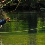 Fly Fishing Setup Guide with Precautions for Beginners