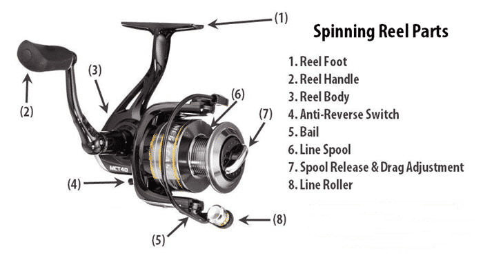 Parts of spinning reel