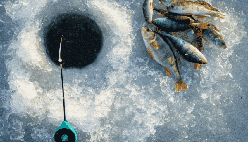 You Want to Go Ice Fishing? Know these 9 Effective Tips for Ice Fishing from a Pro