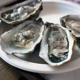 oyster knife vs clam knife; definition, clean, function