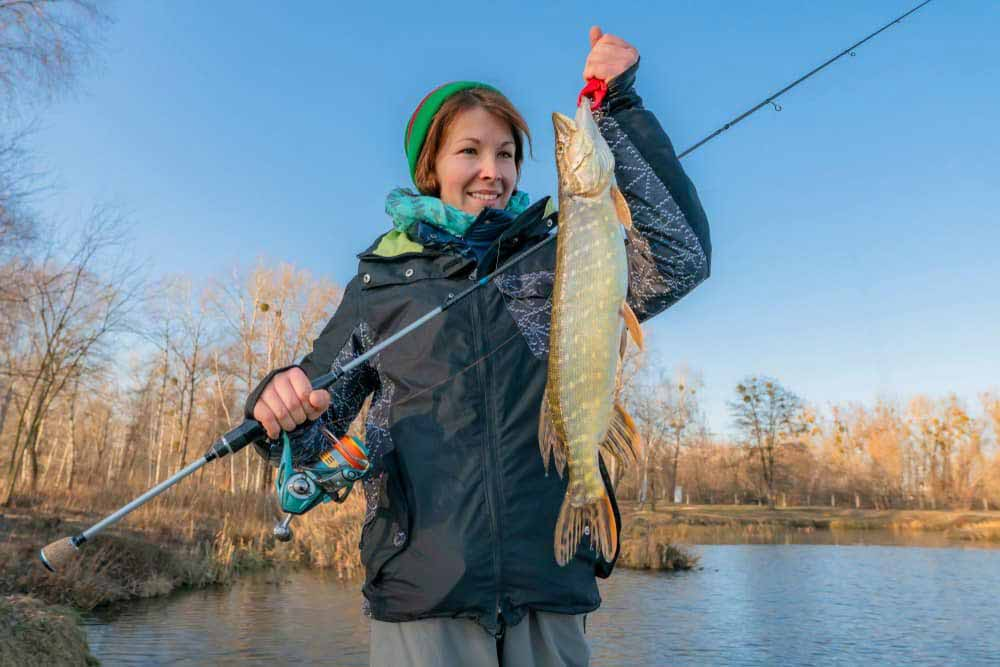 Best Musky Reels - A Comprehensive Buying Guide