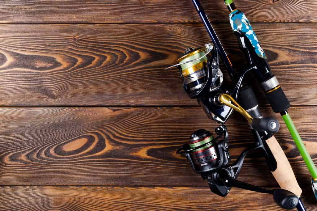 Best Spinning Reels Buyer's Guide