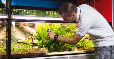how to set up a fish tank filter