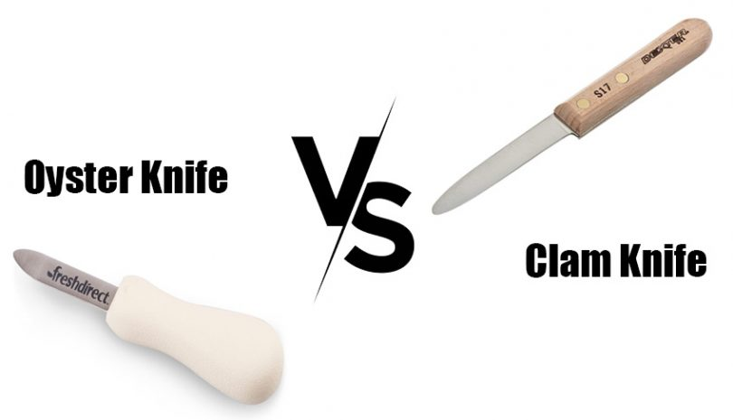 oyster knife vs clam knife